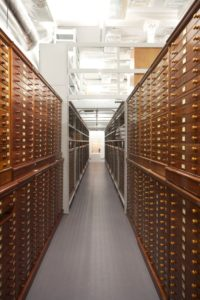 Image of rows of wooden cabinets inside RAMM's storage space for museum objects