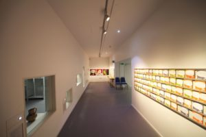 Image of a museum space with display windows that give insight into RAMM's storage space for museum objects