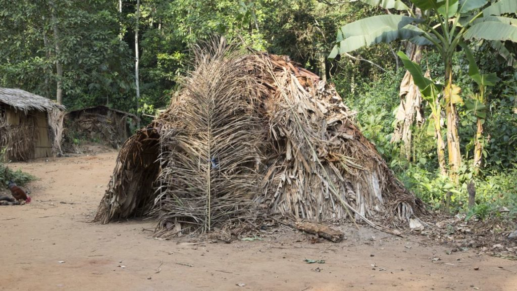 This Baka hut was completed several weeks ago, and has been lived in since. Soon, it will be time for the family to move onto land that is traditionally considered their own. © Gordon Clarke, Institute of Nomadic Architecture