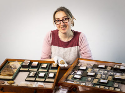 Holly Morgenroth is photographed sitting at a desk holding a small shell in her gloved hand. In front of her are wooden drawers containing more shells from the Montagu collection.