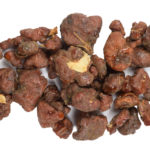 small brown pieces of sumbul root