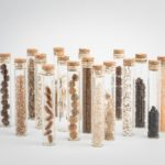 Seeds of many different shapes and colours stored in thin glass tubes with cork bungs.
